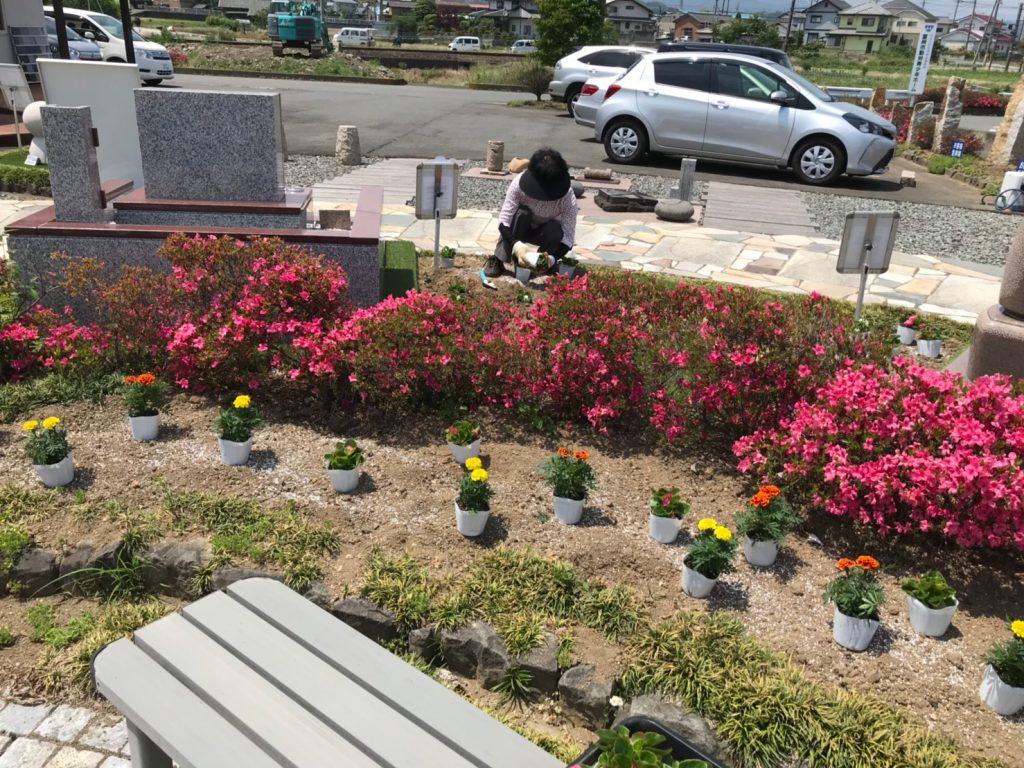 2019.6花植え_190605_0007